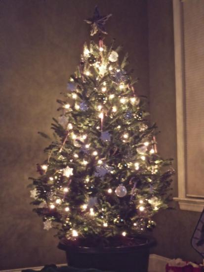 Mom's Lit Xmas Tree 2012