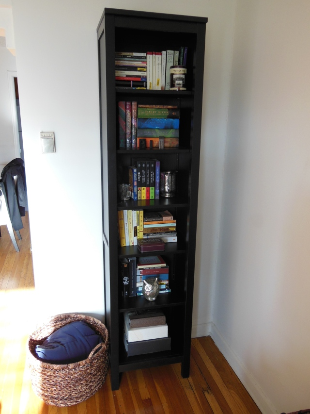 Living Room - Bookcase Detail 1